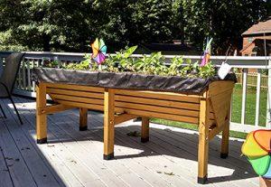 elevated-garden